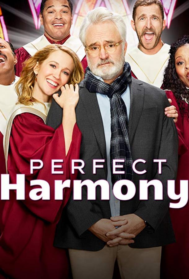 Полная гармония / Идеальная гармония (2019)