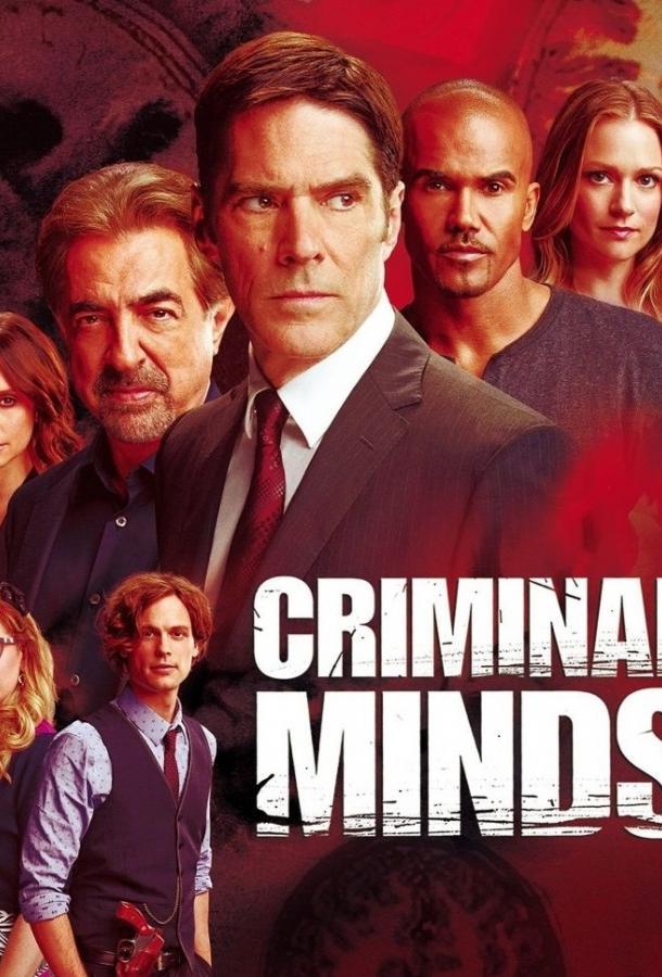Мыслить как преступник