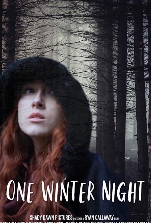 Однажды зимней ночью  (2019).