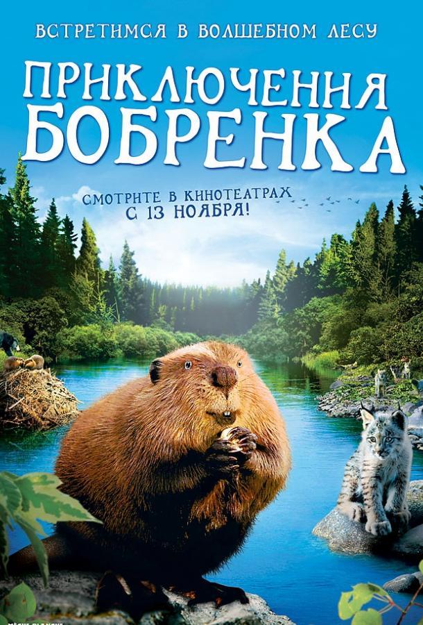 Приключения бобрёнка фильм (2008)