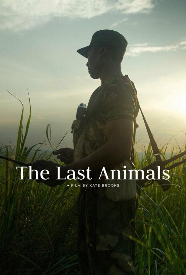 Последние животные