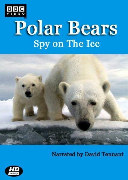 Белый медведь: Шпион во льдах