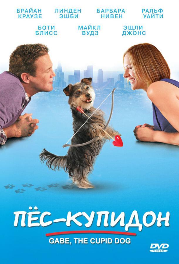 Пес-купидон фильм (2012)