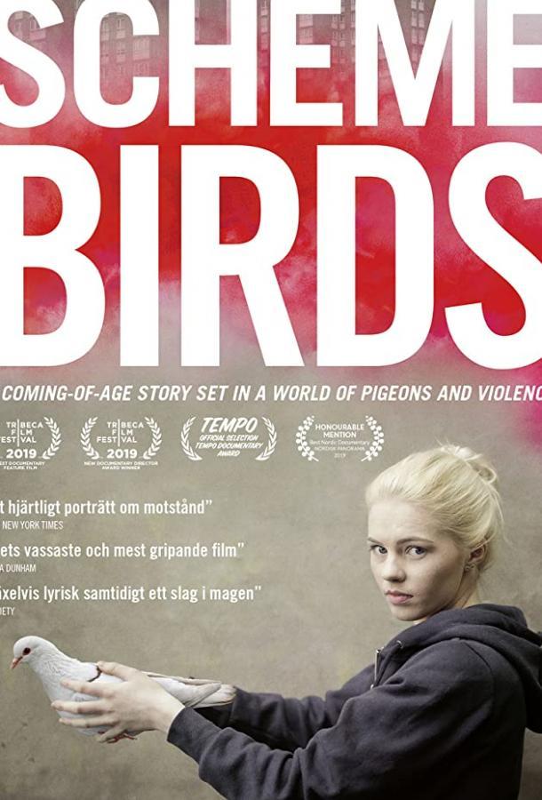 Птички Предместья