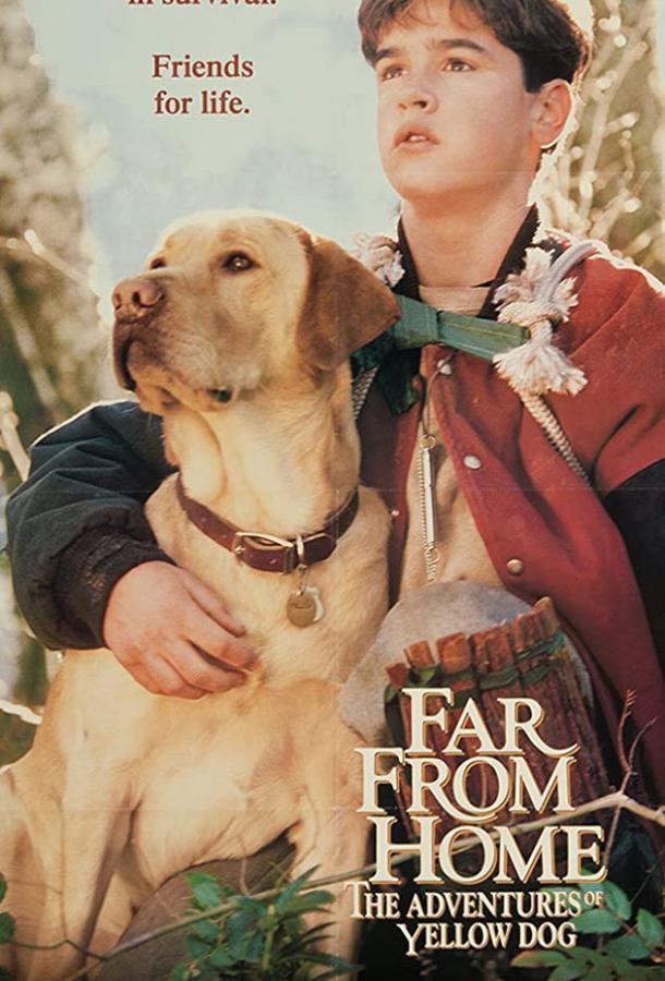 Далеко от дома: Приключения желтого пса
