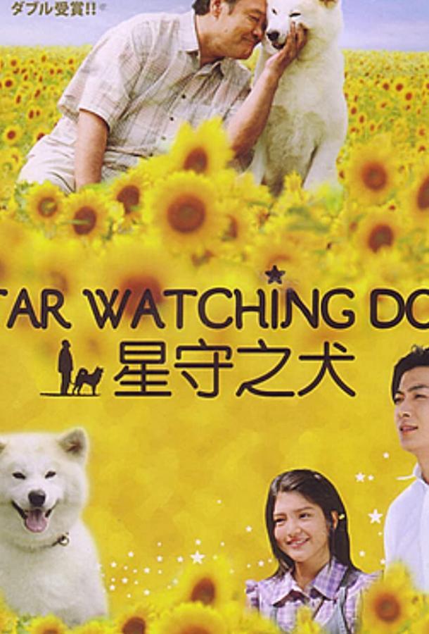 Пёс, смотрящий на звезды