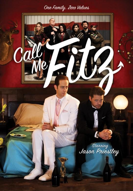 Зовите меня Фитц сериал (2010)
