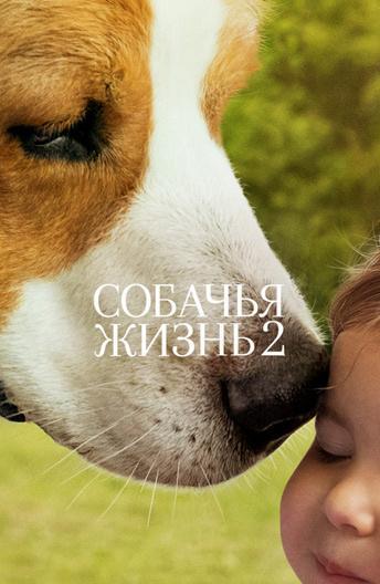 Собачья жизнь 2  (2019).