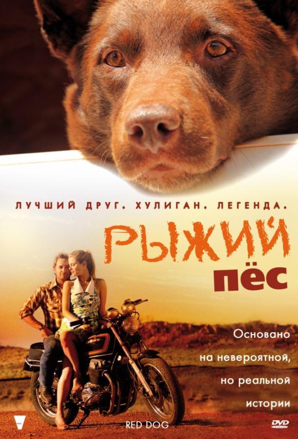 Рыжий пес фильм (2011)