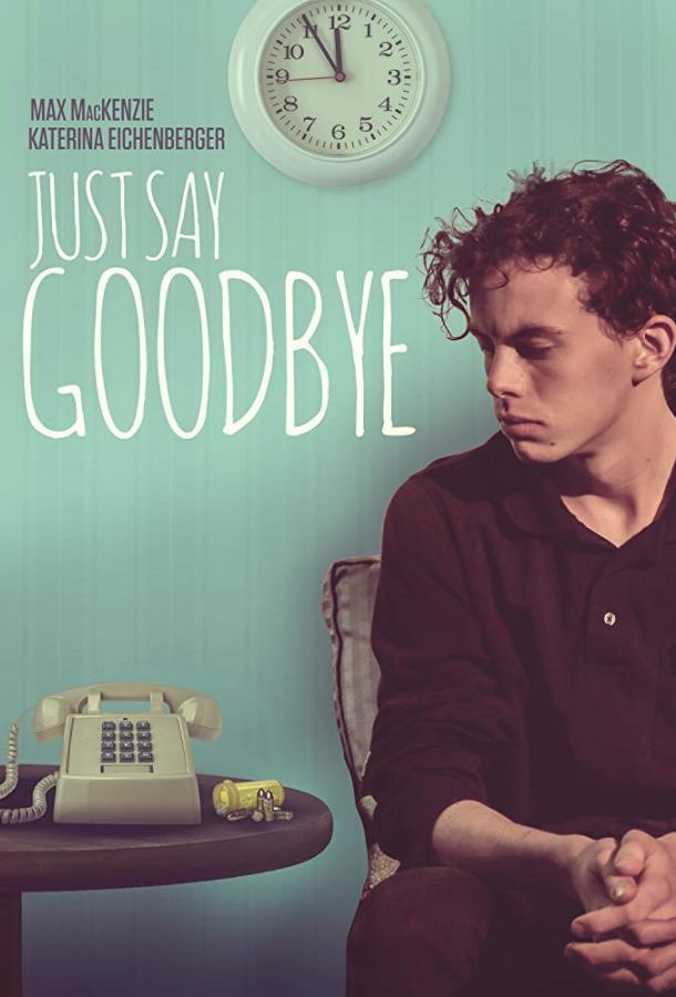 Пора прощаться  (2017).