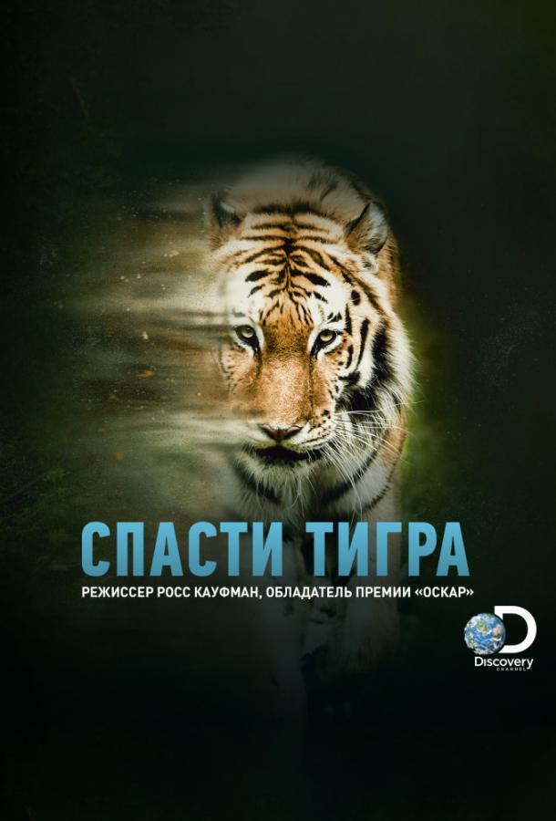Animal Planet: Спасти тигра  (2019).
