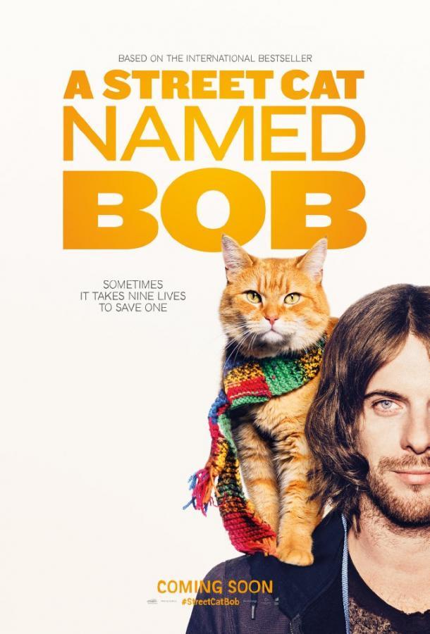 Уличный кот по кличке Боб фильм (2016)